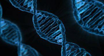 La génomique pour révolutionner la santé, l'environnement et l'agriculture