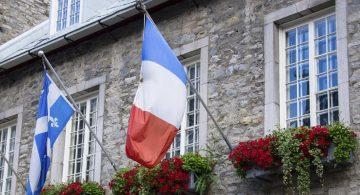 Pleins feux sur le parcours numérique Québec-France
