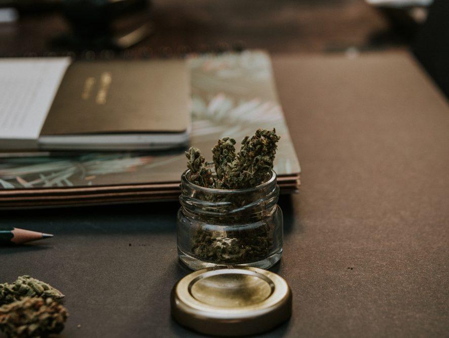 Quel avenir pour le cannabis dans l'industrie pharmaceutique?