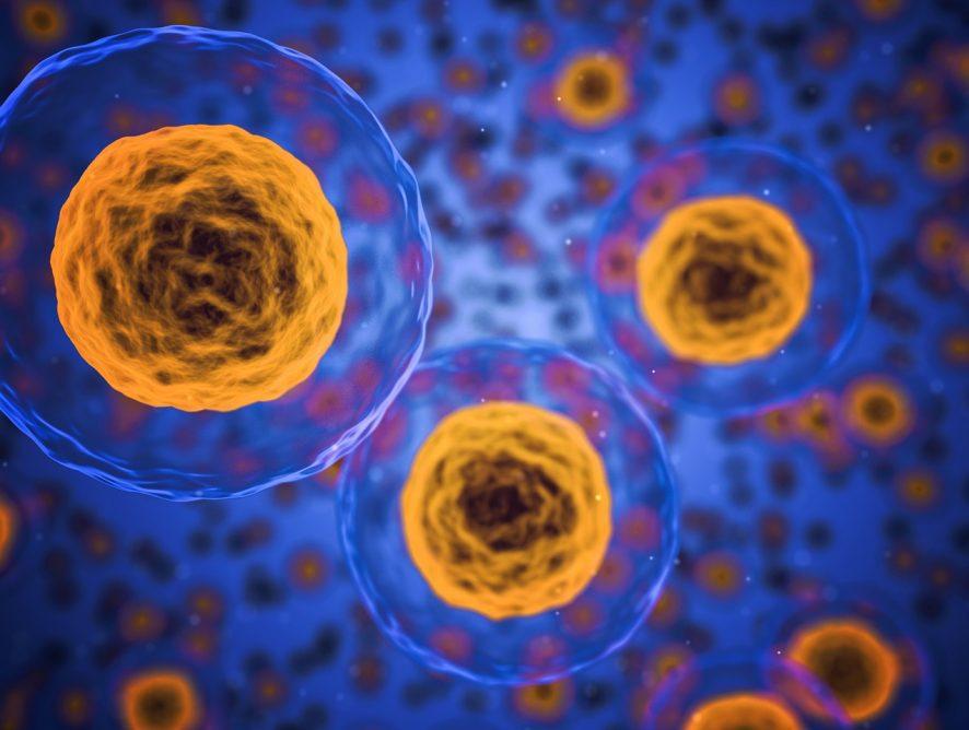 Un nouveau rendez-vous pour innover en sciences de la vie!