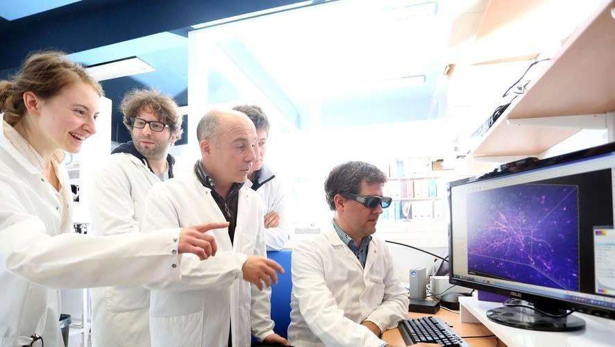 Grandes équipes de chercheurs en hausse, mais pas plus d'innovations