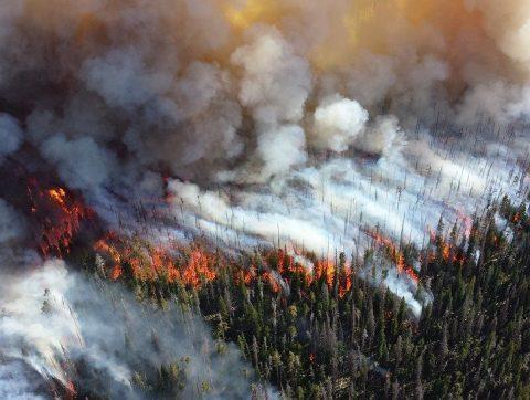 Gérer les catastrophes naturelles grâce aux satellites