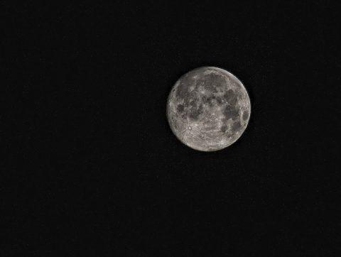 Faire pousser sur la lune