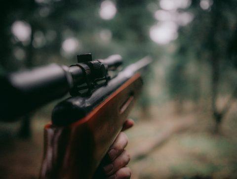 Une solution d'IA pour déceler le bruit d'un coup de fusil