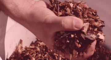 [VIDEO] Une technologie québécoise qui transforme le bois en carburant