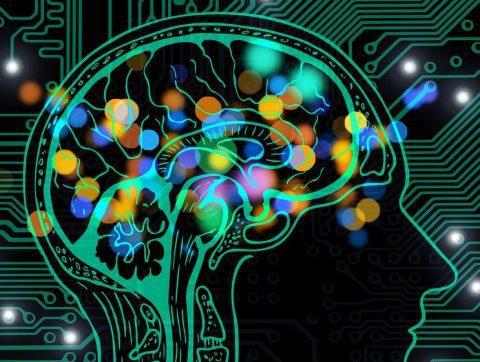 Collisions créatives : le rendez-vous sciences de la vie et IA Life