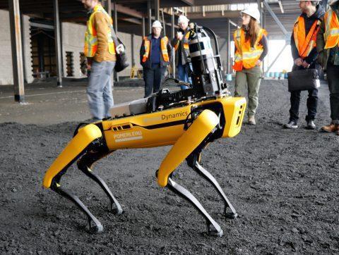 Un robot-chien, meilleur ami des ouvriers ?