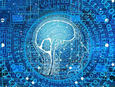 Le CDRIN recrute deux experts en intelligence numérique