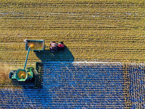 Le monde agricole se tourne vers l'IA pour la santé des sols